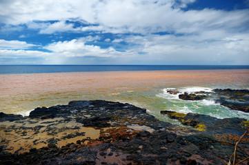Ocean waves crashing on rocks