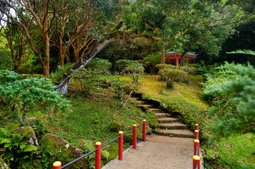 Park near the Byodo-in temple on Oahu