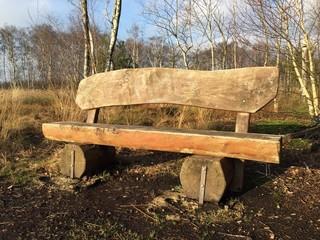 Holzbank im Torfmoor