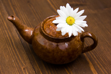 Teapot with chamomile and flower on wooden table