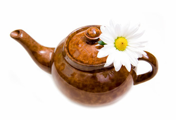 Teapot with chamomile flower on white background
