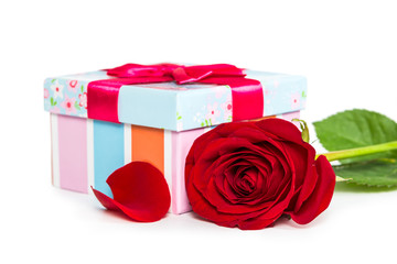 Colorful gift box and rose