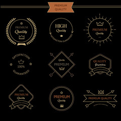 Set of premium quality vintage style elements  labels and badges