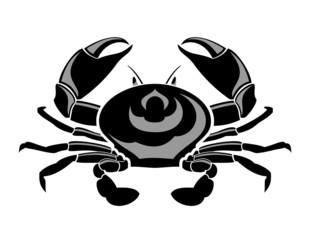 Marine crab.