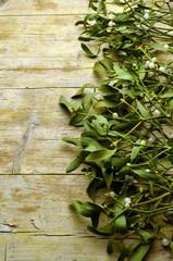 Mistletoe Muérdago blanco Vischio Weißbeerige Mistel Gui