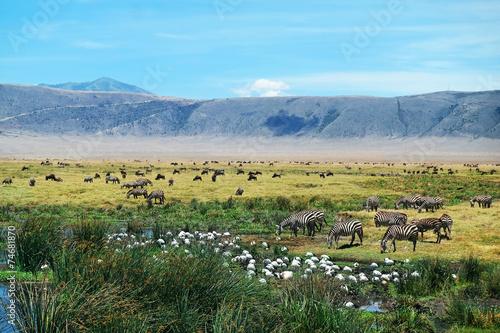 Foto op Plexiglas Landschappen Ngorongoro Crater