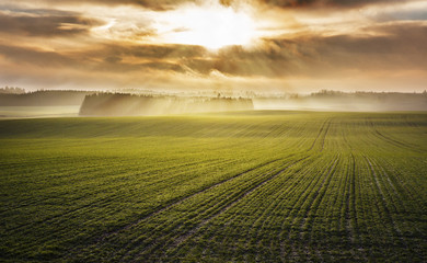 Idyllic sunrise over foggy autumn green fields