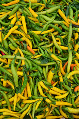 Hot green and yellow peppers