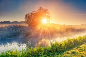 Fantastic foggy river