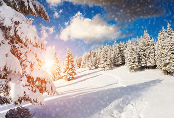 Majestic winter landscape
