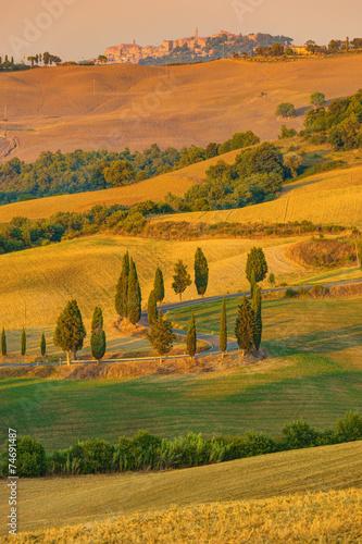 Zdjęcia na płótnie, fototapety na wymiar, obrazy na ścianę : Tuscany Autumn Landscape Italy