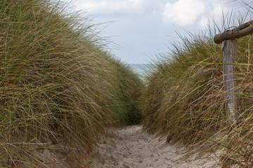 Strandweg zur Ostsee