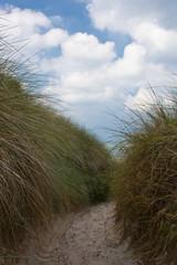 Strandweg zur Ostsee 2