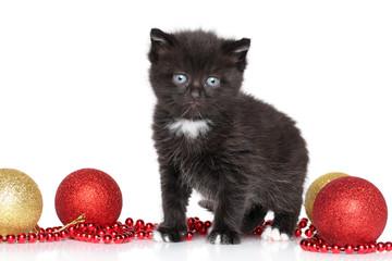 Black Kitty and Christmas balls