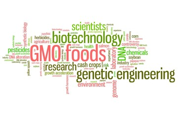 GMO concepts - word cloud concept