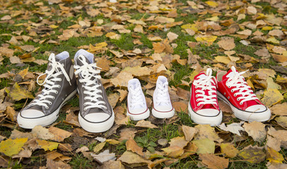 shoes on grass in big medium small size in family love concept