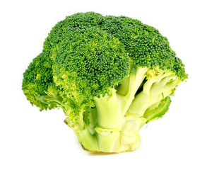 Vibrant green broccoli vegetable