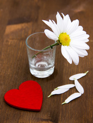 Daisy with little heart on wooden table