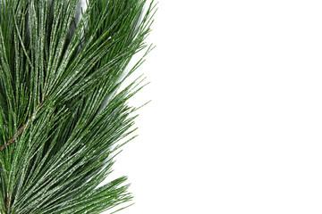 christmas tree border isolated on white background