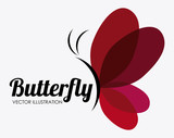 Butterfly design, vector illustration.