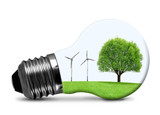 Eco bulb with wind turbines and tree isolated on white