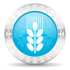 grain icon, christmas button, agriculture sign