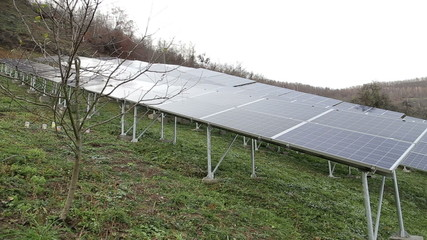 Solar panels in the nature - pan shot
