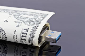 Portable USB flash drive is wrapped in a dollar