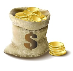 bag with golden money