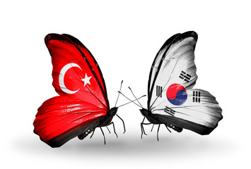 Two butterflies with flags Turkey and South Korea