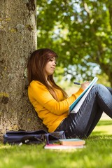 Female student doing homework against tree in park