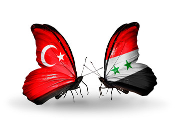 Two butterflies with flags Turkey and Syria