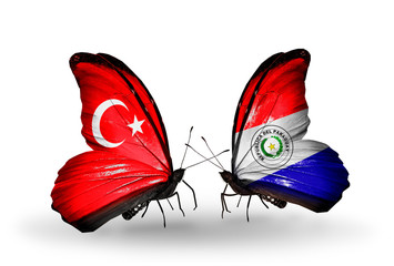 Two butterflies with flags Turkey and Paraguay