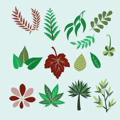 Collection of colorful leaves - Illustration