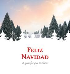 Composite image of feliz navidad