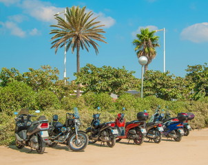 Motorcycles in parking lot on  background of palm trees