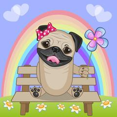 Pug Dog with flower