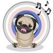 Pug Dog with headphones
