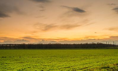 Campagna al tramonto 2