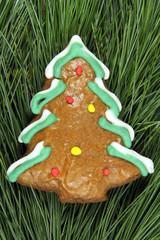 homemade christmas tree gingerbread on fir tree