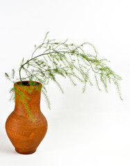 Jug with decorative grass