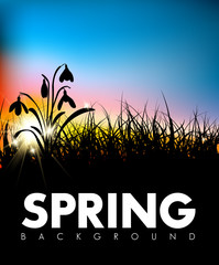 Spring vector grass dawn background