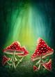 Leinwanddruck Bild - Enchanted dark forest