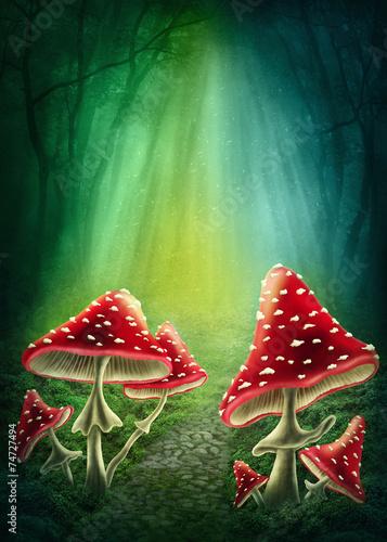 Leinwanddruck Bild Enchanted dark forest