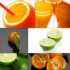 citrus fruits collage