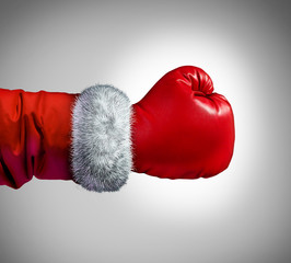 Santa Claus Boxing Glove