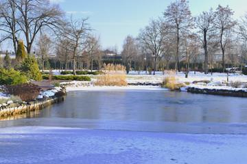 Зимнее озеро в парке