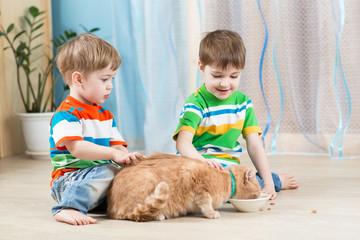 children boys feeding red cat