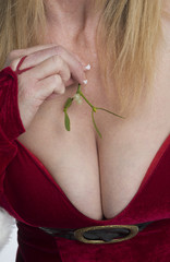 Woman holding a sprig of Mistletoe close to her breast