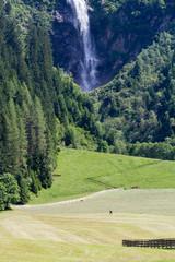 Heuernte Tirol